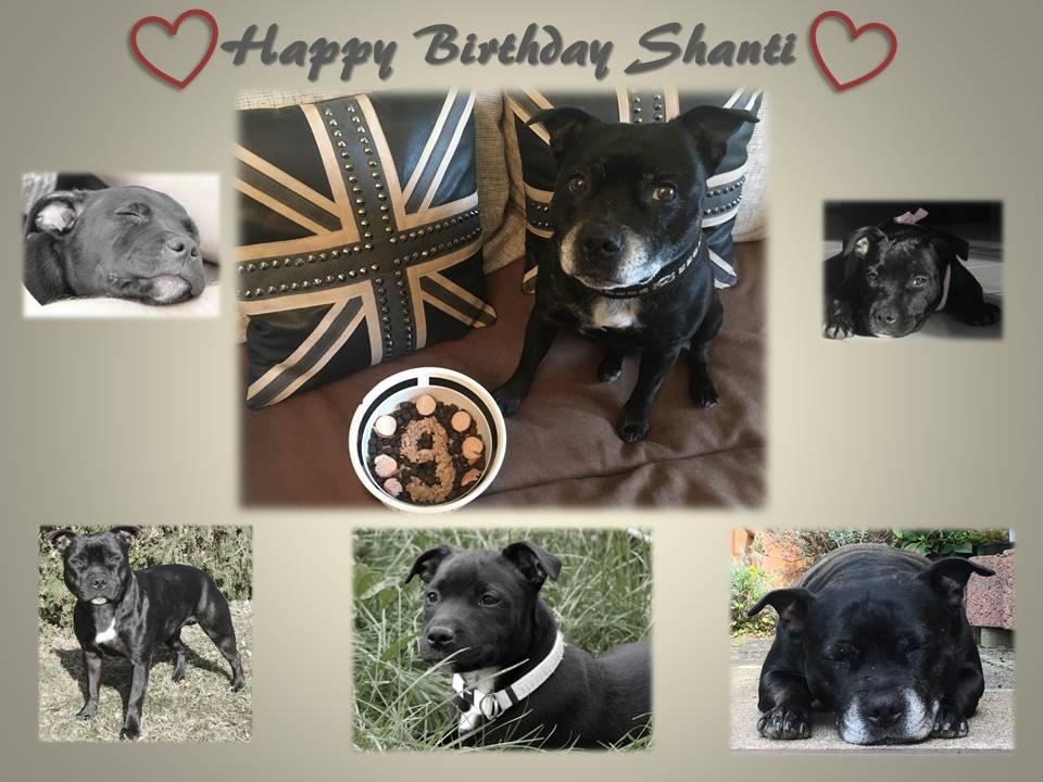 Happy Birthday Shanti 9.